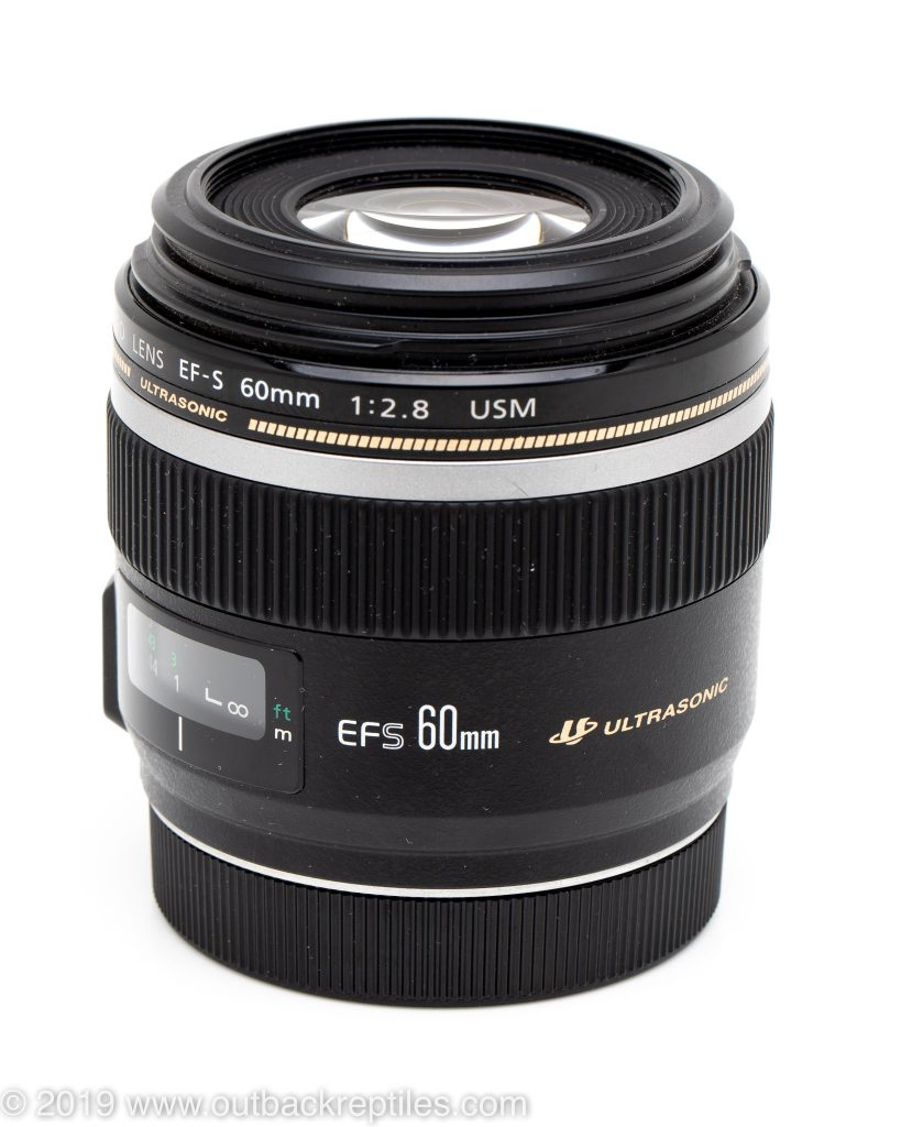 Canon 60mm macro lens review