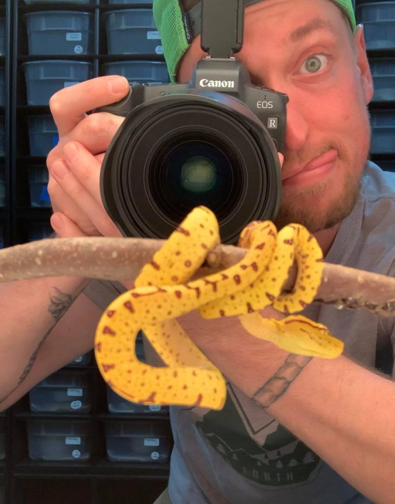 reptile photography tips and tricks